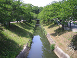 bl-20050508d.jpg