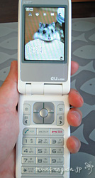bl-20050723a.jpg