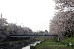 bl-20060416c.jpg