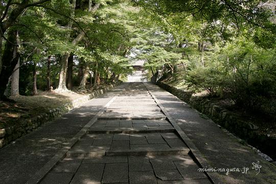 毘沙門堂 京都