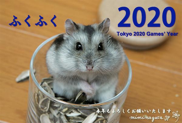 miminagusa_jp_Nenga